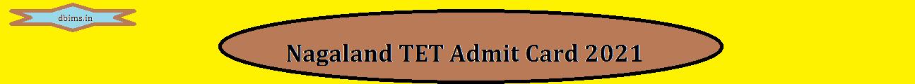 Nagaland TET Admit Card 2021