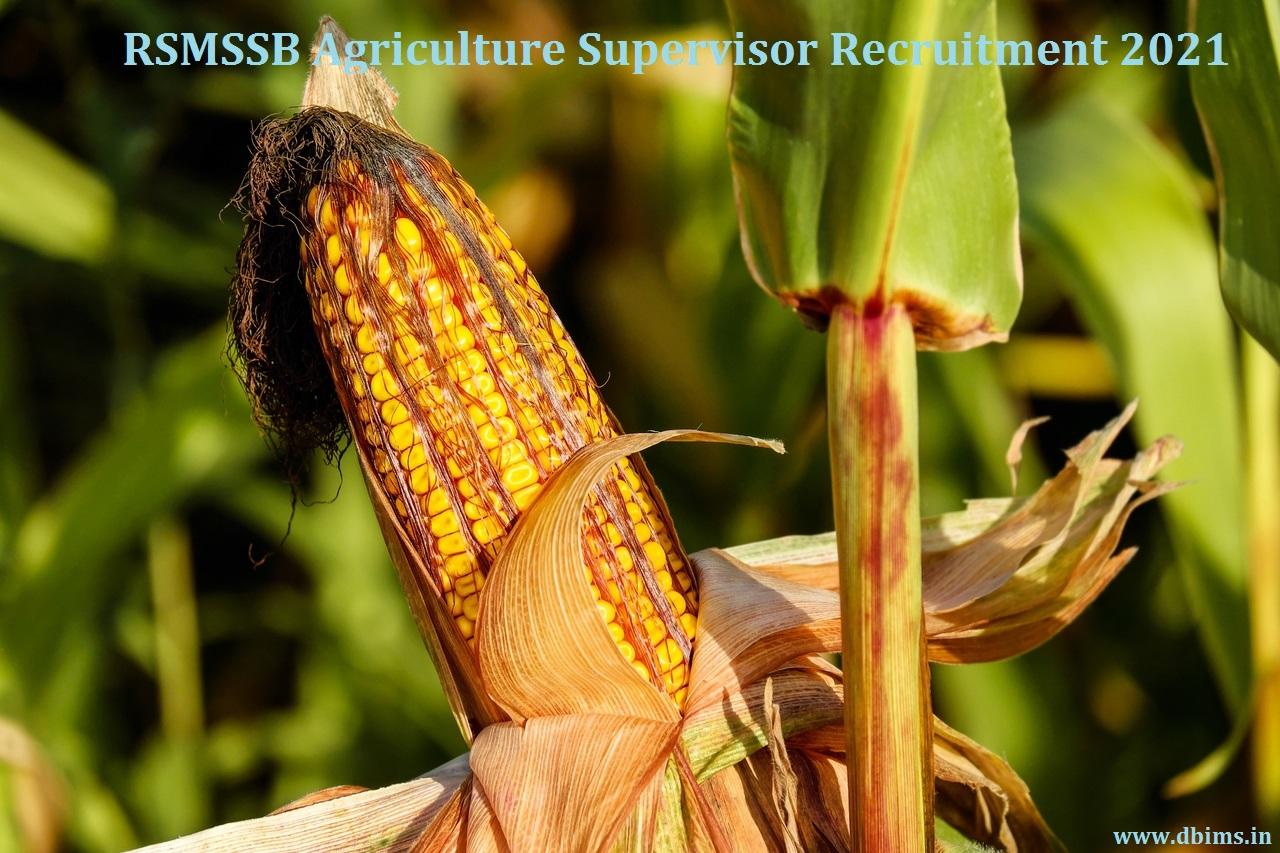 RSMSSB Agriculture Supervisor Recruitment 2021